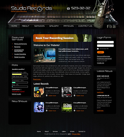 Studio records website theme's screenshot